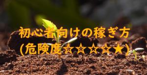 初心者向けの稼ぎ方(危険度☆☆☆☆★)