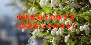 中級者向けの稼ぎ方(危険度☆☆★★★)